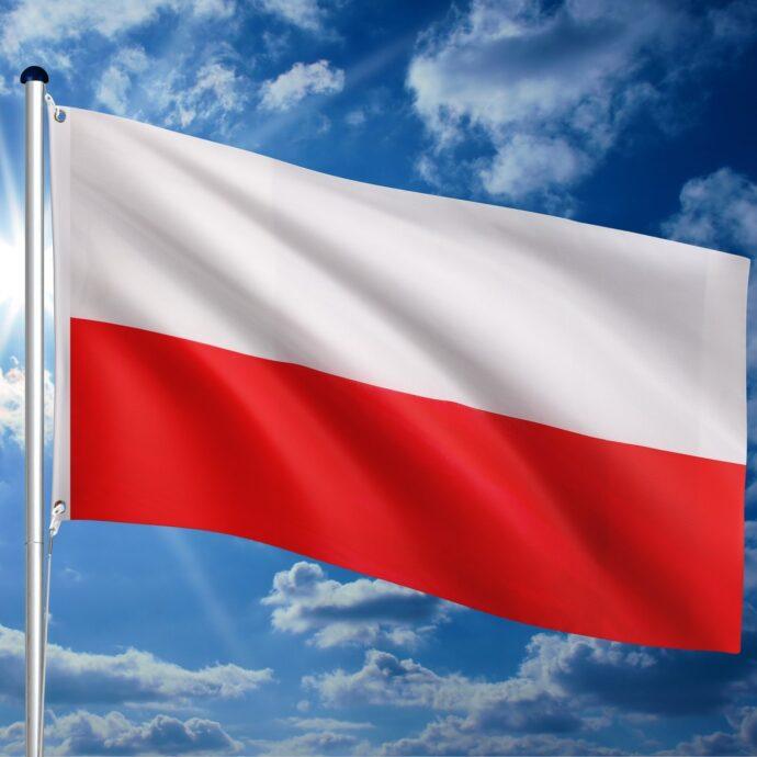 pol_pl_flaga-polski-polska-narodowa-120x80-cm-na-maszt-2599_4